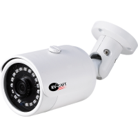 2.0MP Low Lux цилиндрическая мини IP Камера RVH-HW310AC80-LEP